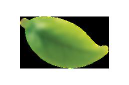 banner-item_leaf2